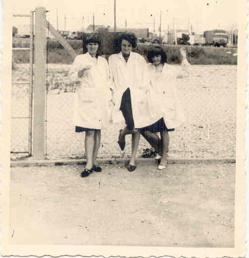 1964 Amies